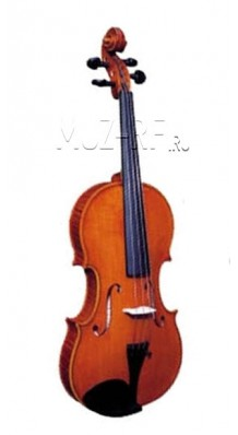 Фото STRUNAL 205WA-4/4 (Скрипка концертная, модель Гварнери)