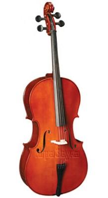 Фото CARAYA MC760R-4/4 (Виолончель Полный коплект (смычок, чехол); для обучения в музыкальной школе)