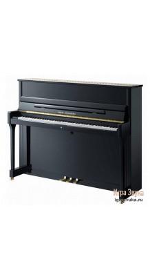 Фото W.STEINBERG PERFORMANCE P118 190014-1MK (Пианино акустическое, черное, латунная фурнитура)