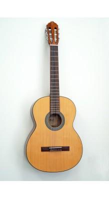 Фото CORT AC100-SG (Классическая гитара 4/4.(натуральный глянцевый))