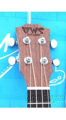 BWS B-BK21
