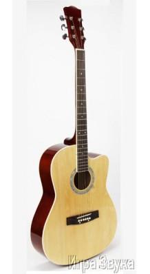 Фото J KOSMAN GT39N (Полноразмерная акустическая гитара с вырезом)