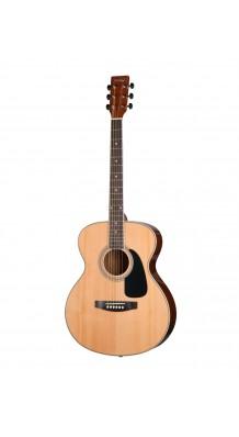Фото HOMAGE LF-4021 (Фольковая гитара)