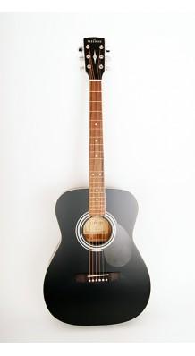 Фото PARKWOOD PF51-BKS (Акустическая гитара с чехлом)