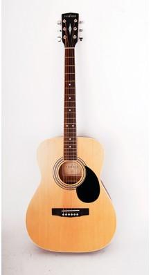 Фото PARKWOOD PF51-OP (Акустическая гитара с чехлом)