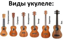 Как выбрать укулеле